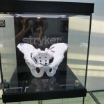 Stryker, Empfang