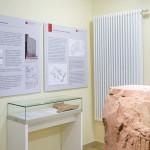 Museum Großeicholzheim und seine Geschichte