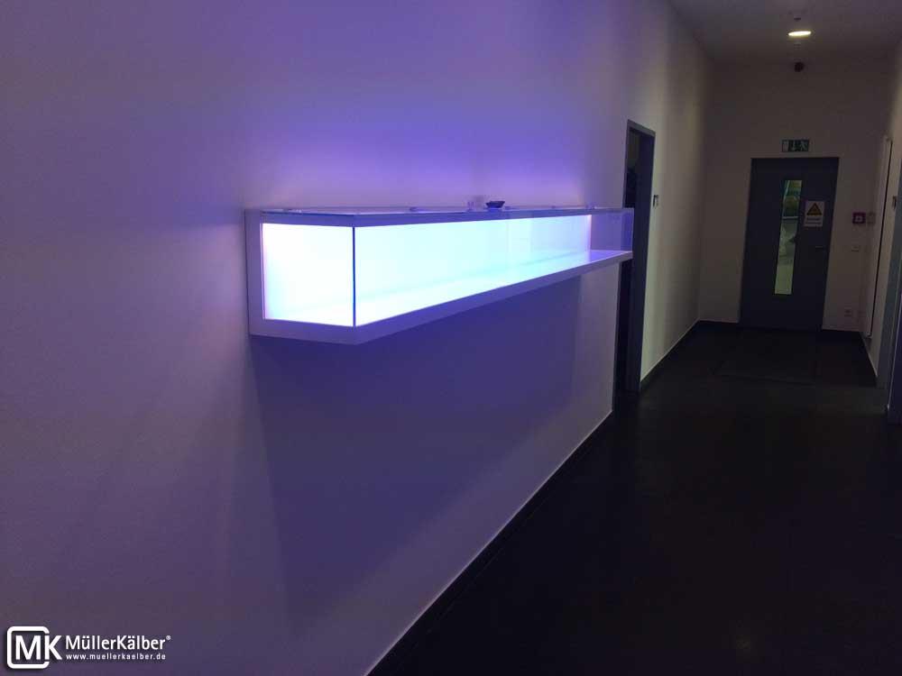 Wandvitrinen mit Farbwechsel und LED-Beleuchtung